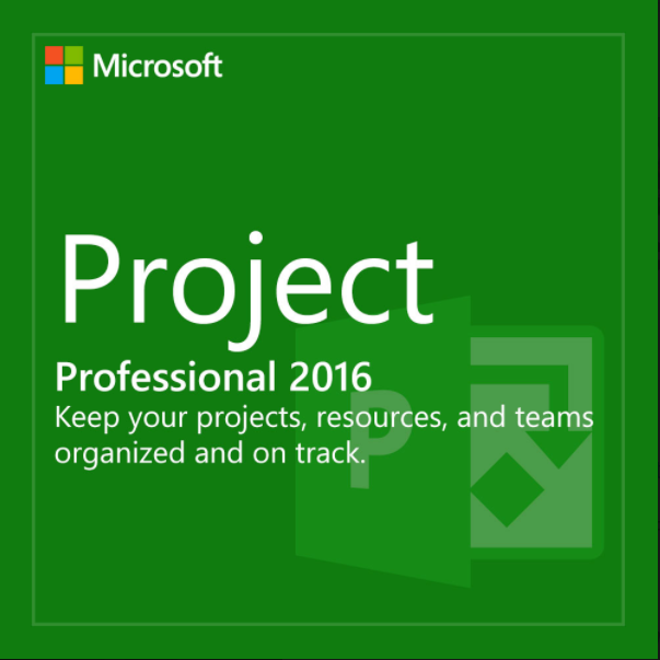 Buy Oem Ms Project Professional 2018