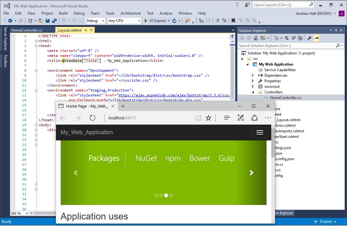 Microsoft Visual Studio Premium Program for Sale